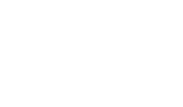 Insight Learning Design